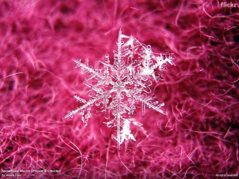 """Snowflake Macro""  Jessica Dyer"