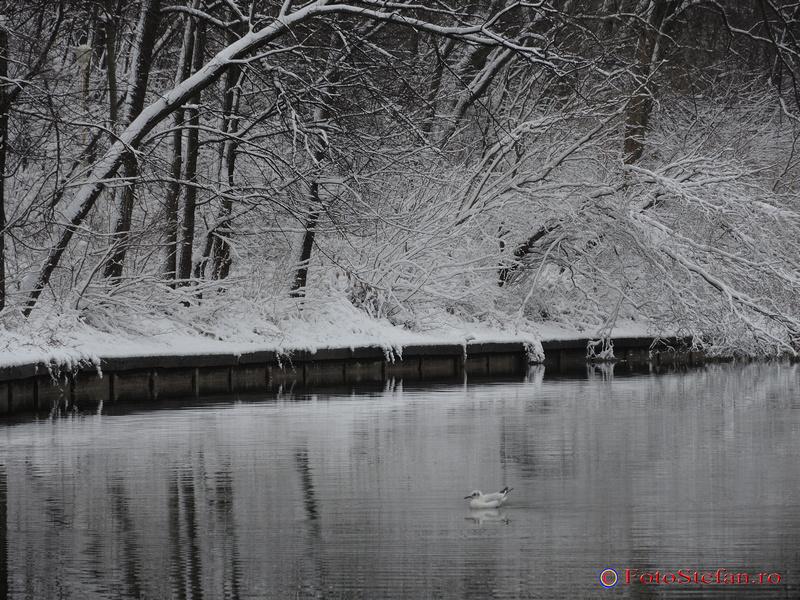 parcul national bucuresti iarna zapada