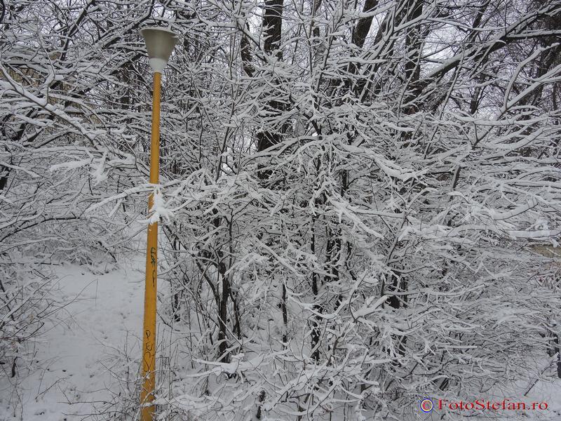 parcul national iarna bucuresti
