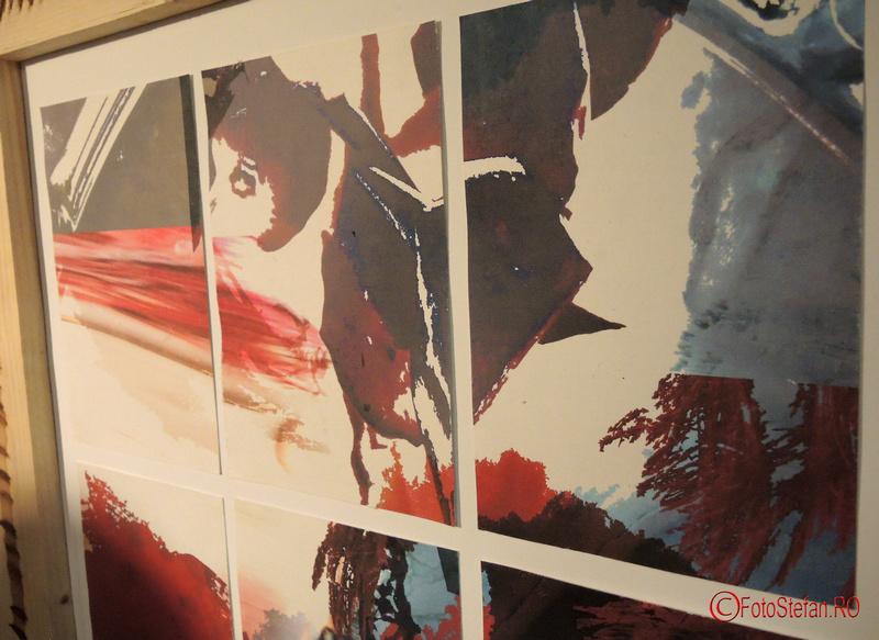Cristiana Negoescu artist vizual muzeul taranului roman