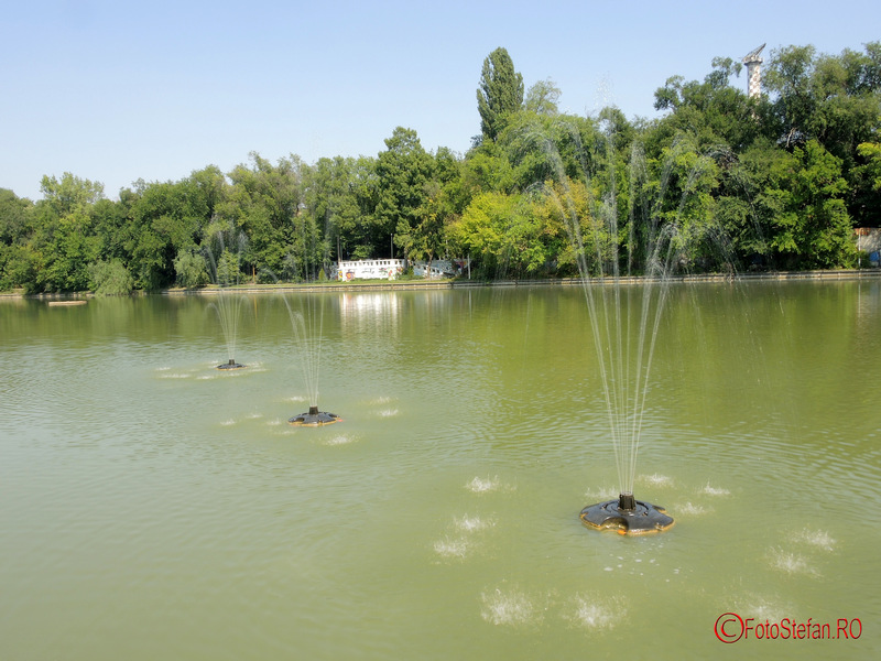 fantani pe apa lacului parc national