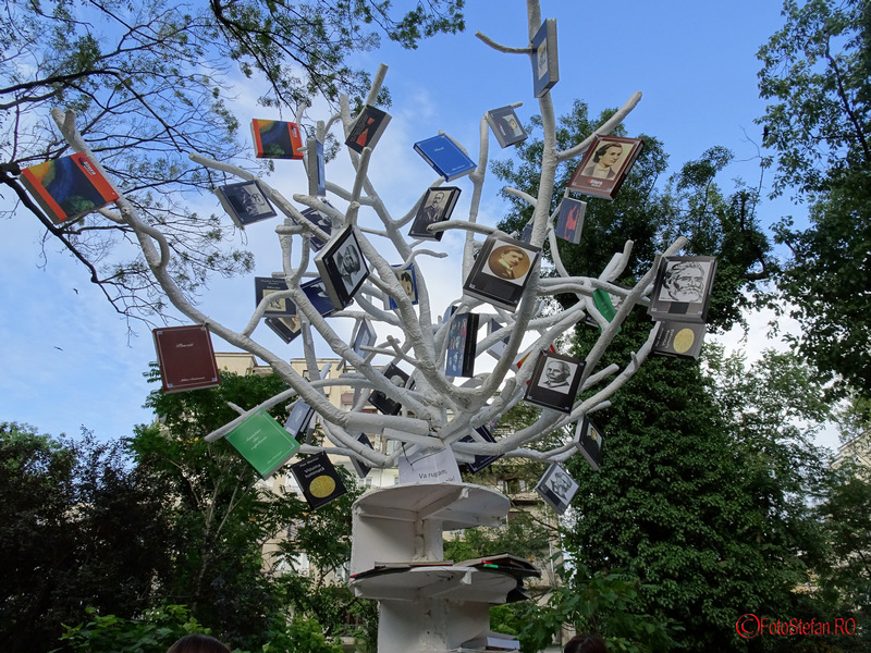copacul cu carti cismigiu imagini