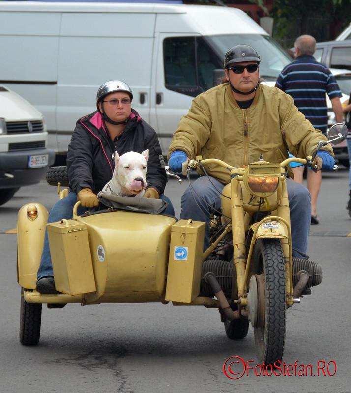 pasagerii catel motocicleta cu atas