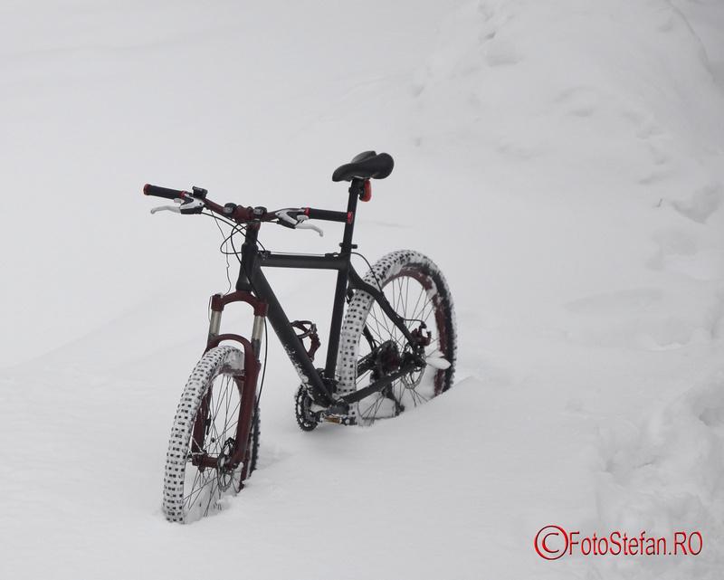 bicicleta in zapada bucuresti