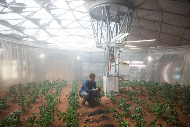 cultivare carfoti caca fecale marte film sf