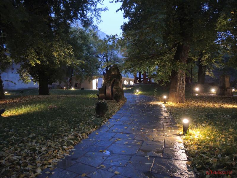 Casa-Cesianu-curte-seara-1