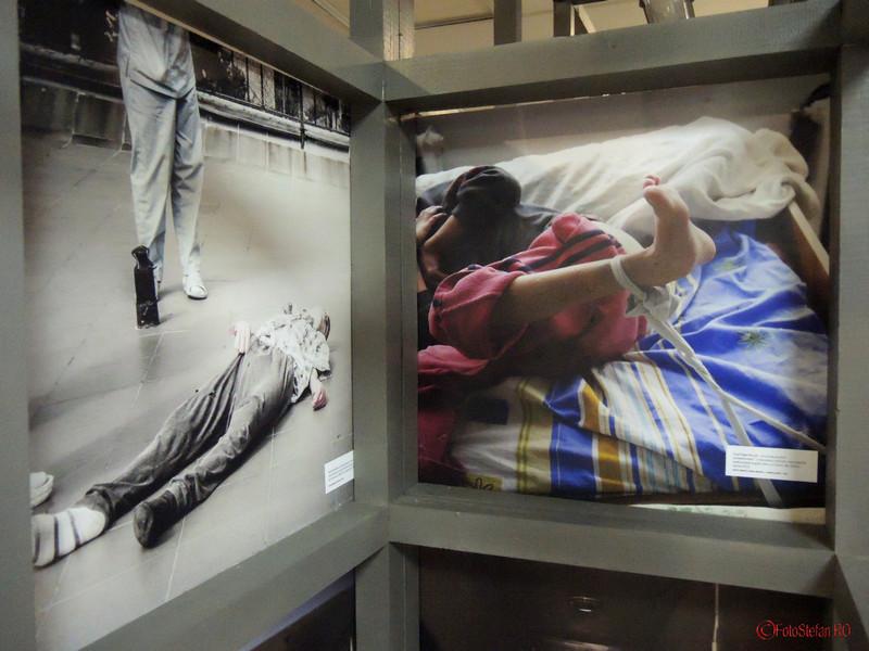 Lagarele de langa tine: expozitia foto in cusca