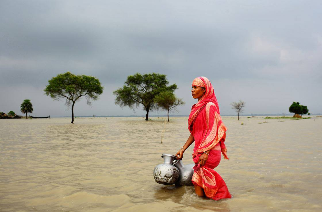 Yusuf Ahmed winner Climate: state of emergency