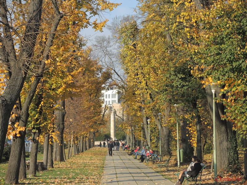 toamna poze parcul carol bucuresti