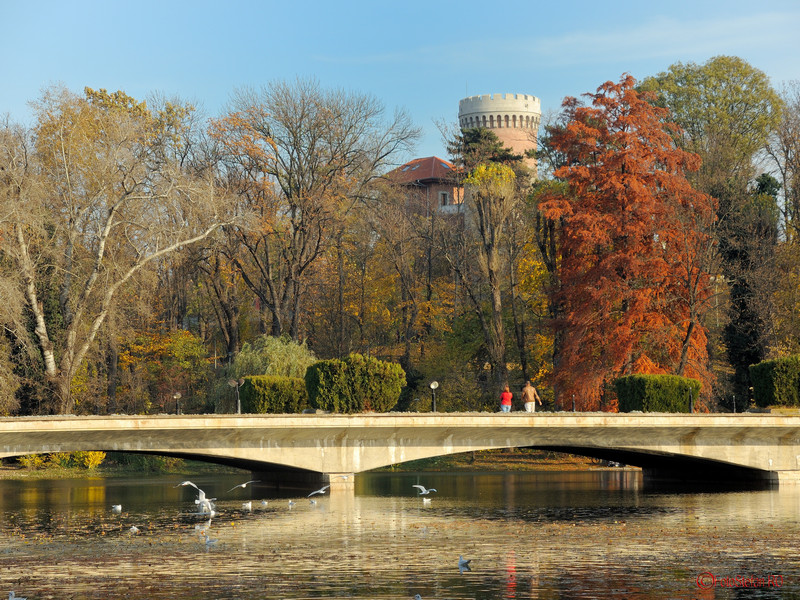 foto  toamna parcul carol bucuresti