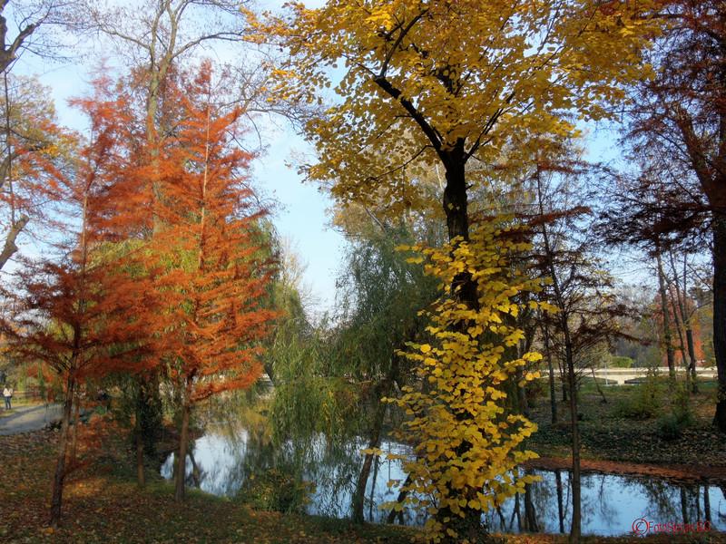 poze  toamna parcul carol bucuresti