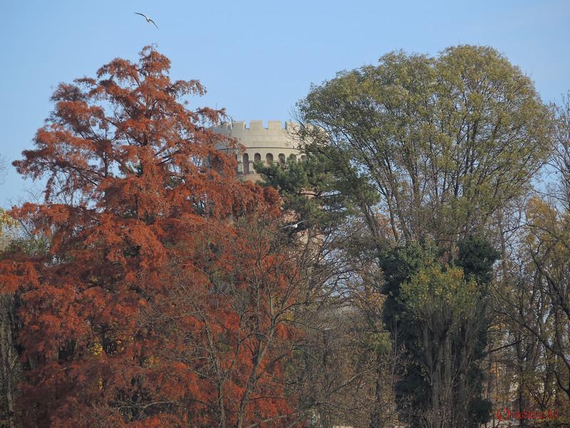 castel  toamna parcul carol bucuresti