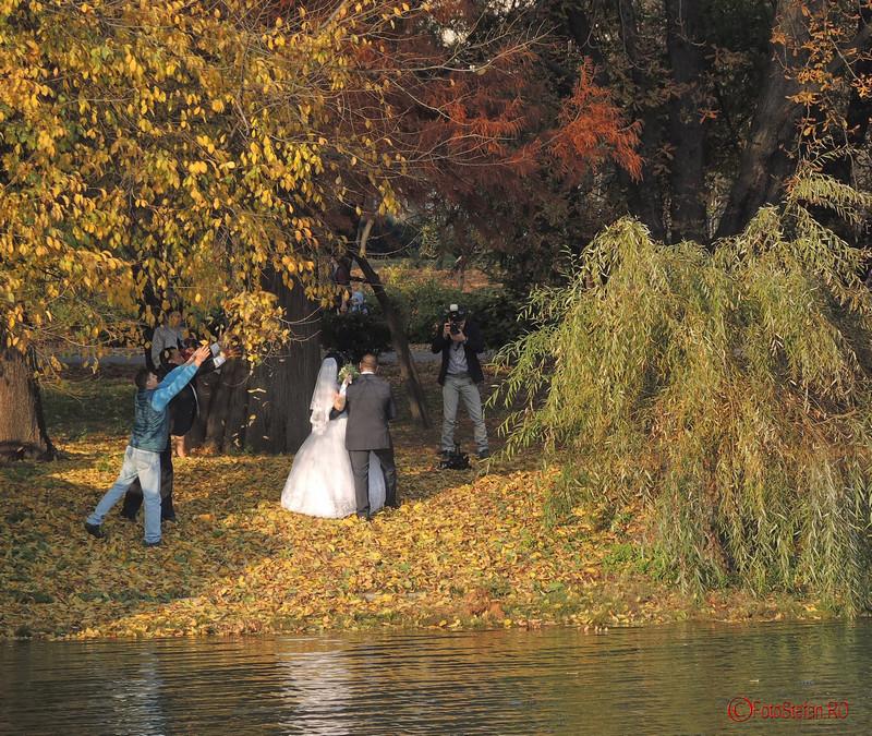 fotograf nunta toamna parcul carol bucuresti