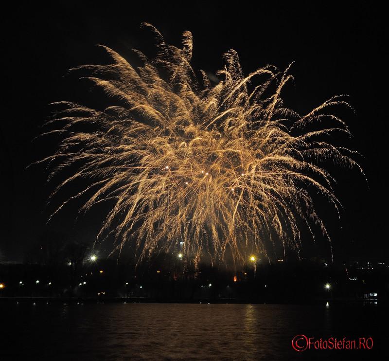 poza artificii revelion parc titan bucuresti