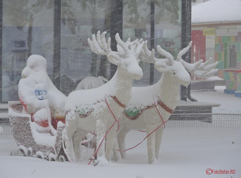 poza reni mos craciun iarna bucuresti
