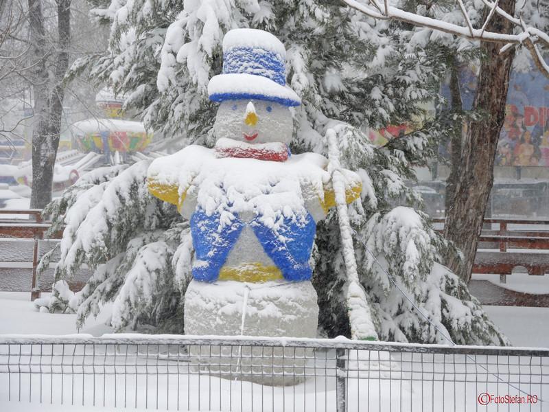 poza iarna zapada parcul tineretului oraselul copiilor