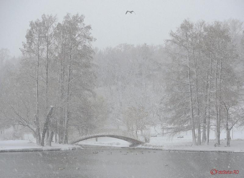 foto poza parcul tineretului iarna ninsoare