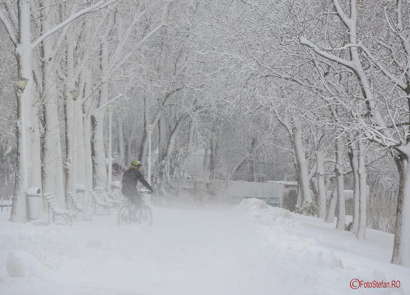 poza plimbare bicicleta iarna ninsoare parcul tineretului