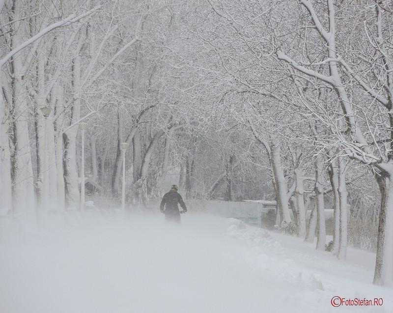 poza foto biciclist parcul tineretului bucuresti iarna zapada