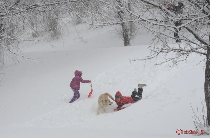 foto poza sanius parcul tineretului iarna