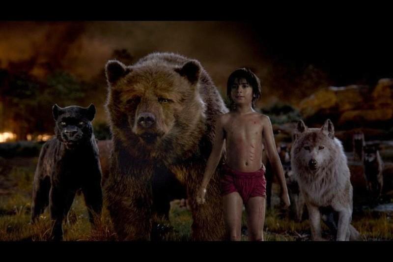 film cartea junglei Bagheera, Baloo, Mowgli, Raksha