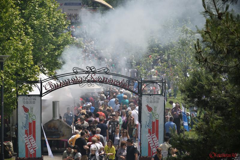 poza multime oameni festivalul turcesc parcul ior titan