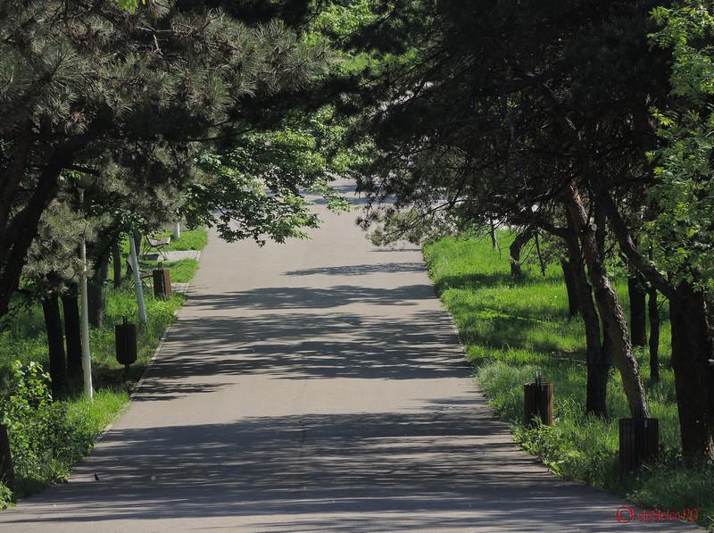 poze alei parcul pantelimon bucuresti
