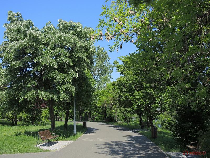 fotografii parcul pantelimon bucuresti vara