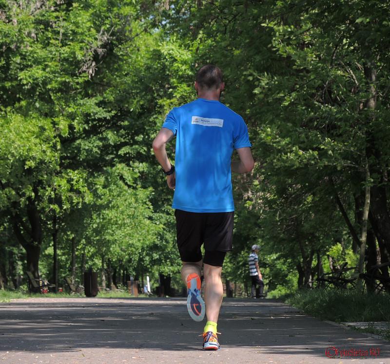 poza alergator parcul pantelimon bucuresti