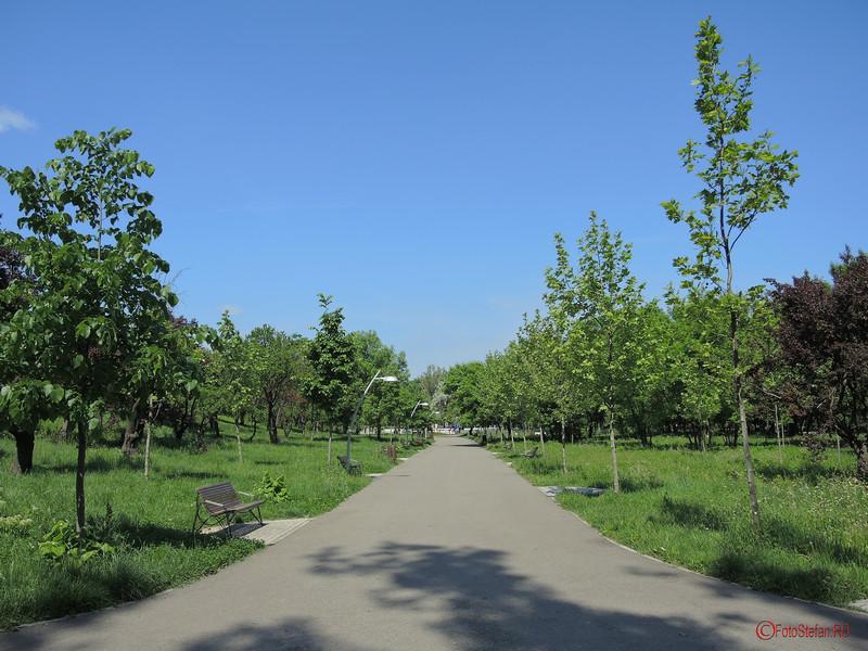 poza alee parcul pantelimon bucuresti sector 3