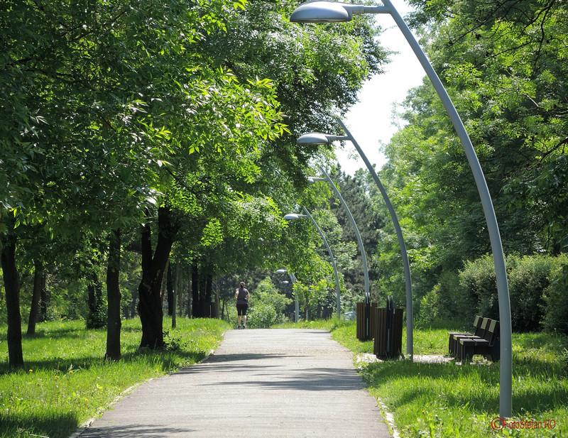 poze alergatori alee parcul pantelimon bucuresti