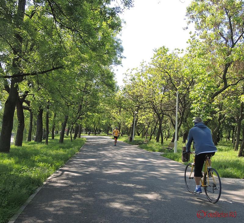 poza alergator biciclist parcul pantelimon