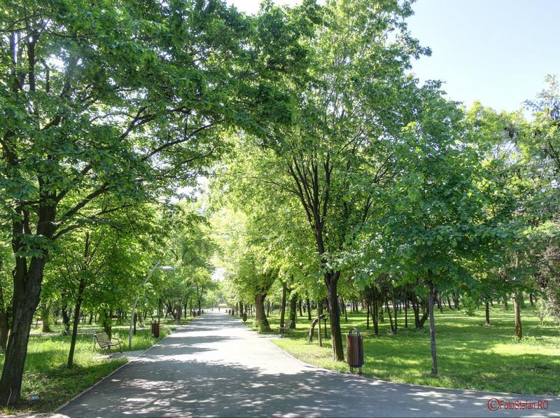 imagini alei parcul pantelimon bucuresti
