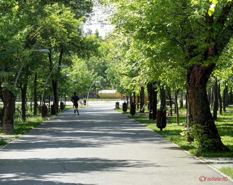 poza alee parcul pantelimon bucuresti