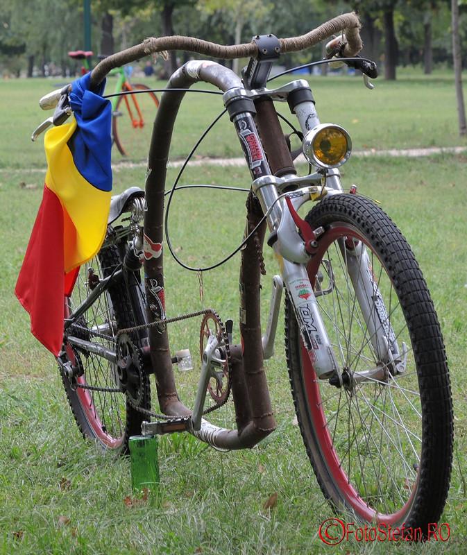poza steagul tricolor romanesc bicicleta