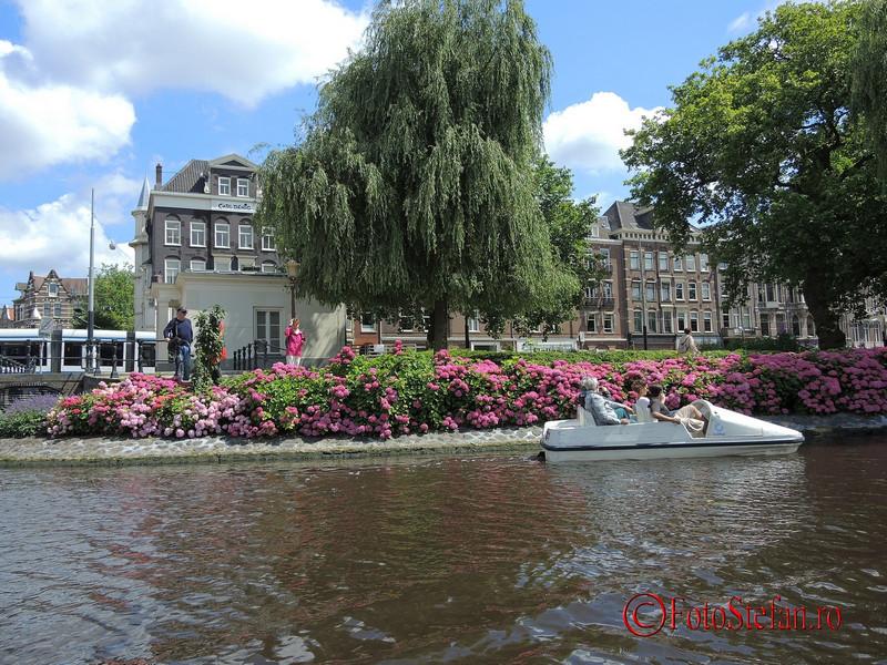 poza flori amsterdam