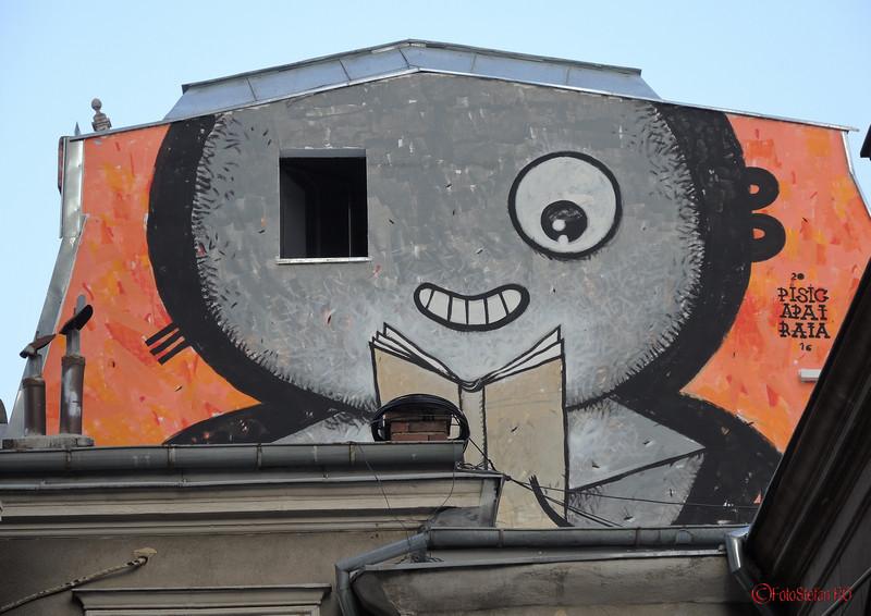 poza graffiti pisica patrata carturesti