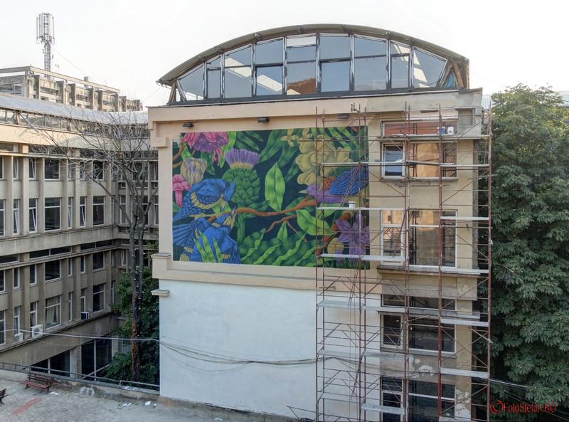 poza graffiti sado curtea interioara arhitectura bucuresti