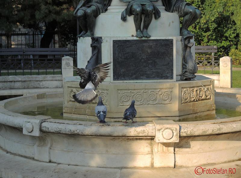 poza porumbel zbor parcul Luigi Cazzavillan Bucuresti