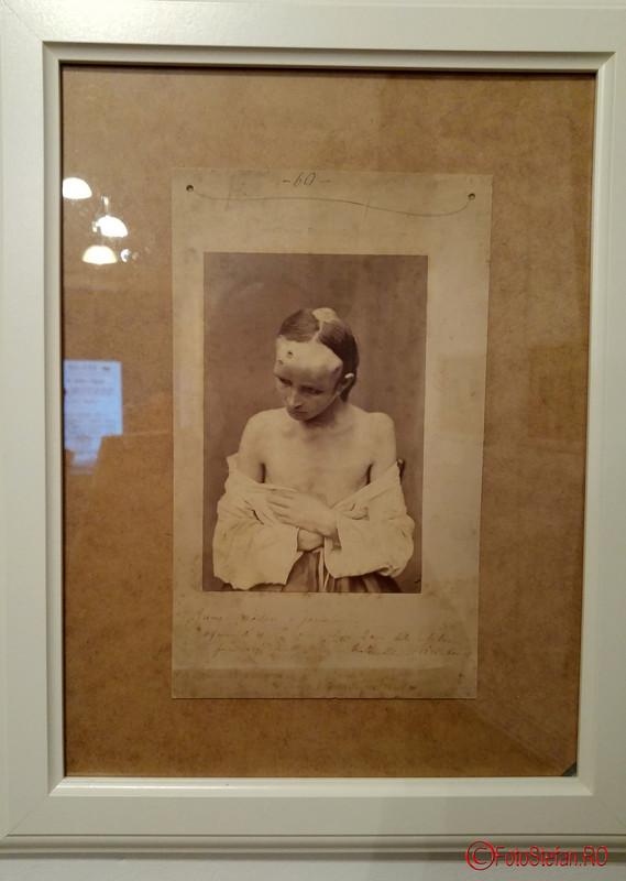 fotografie medicala expozitie haart studio bucuresti