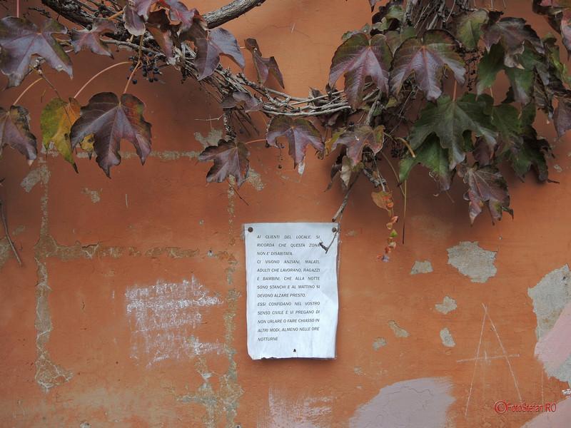 fotografii cartierul Trastevere Roma Italia decembrie