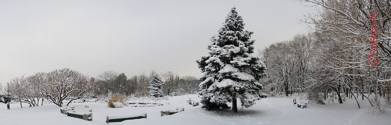 poza panoramica parcul herastrau iarna bucuresti