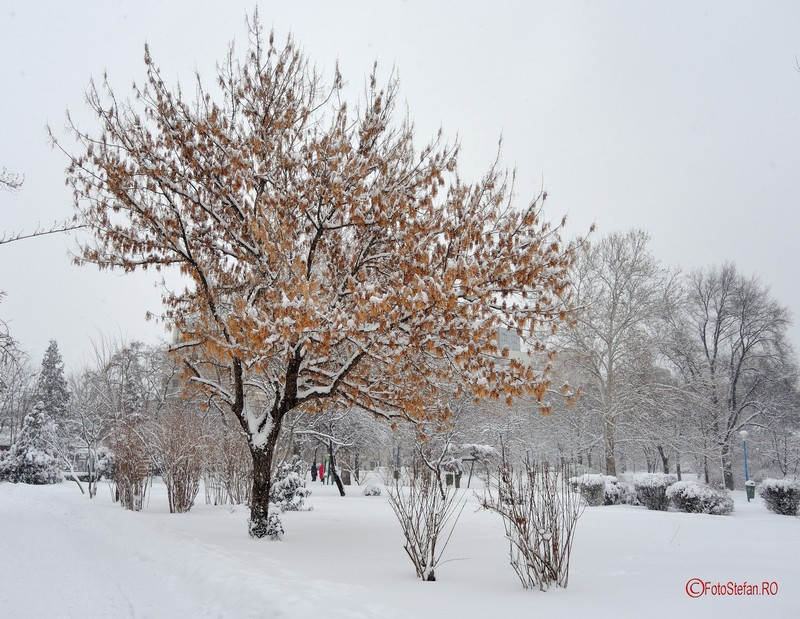 poza iarna bucuresti zapada parcul circului