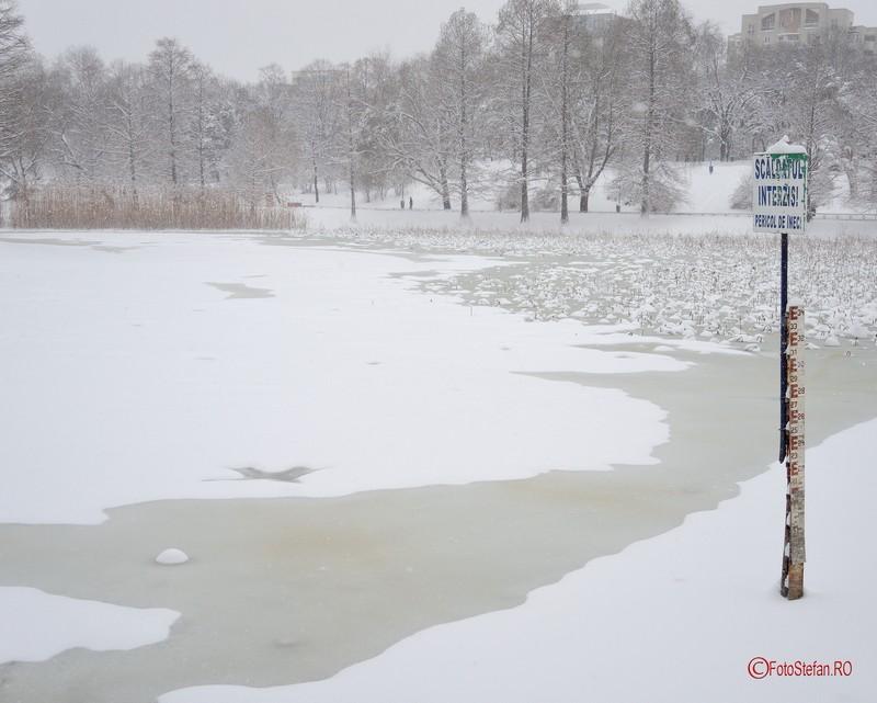 fotografii parcul circului lac iarna zapada bucuresti 2017