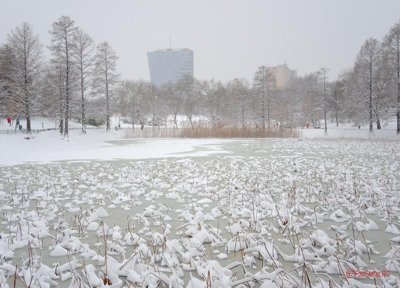 poza lacul circului iarna inghetat