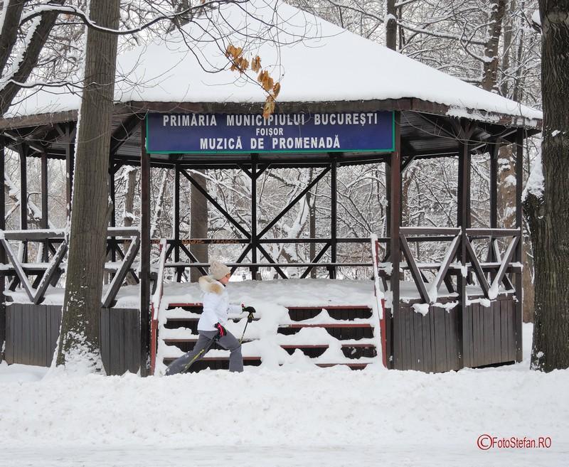 poza fata schiuri parc herastrau zapada