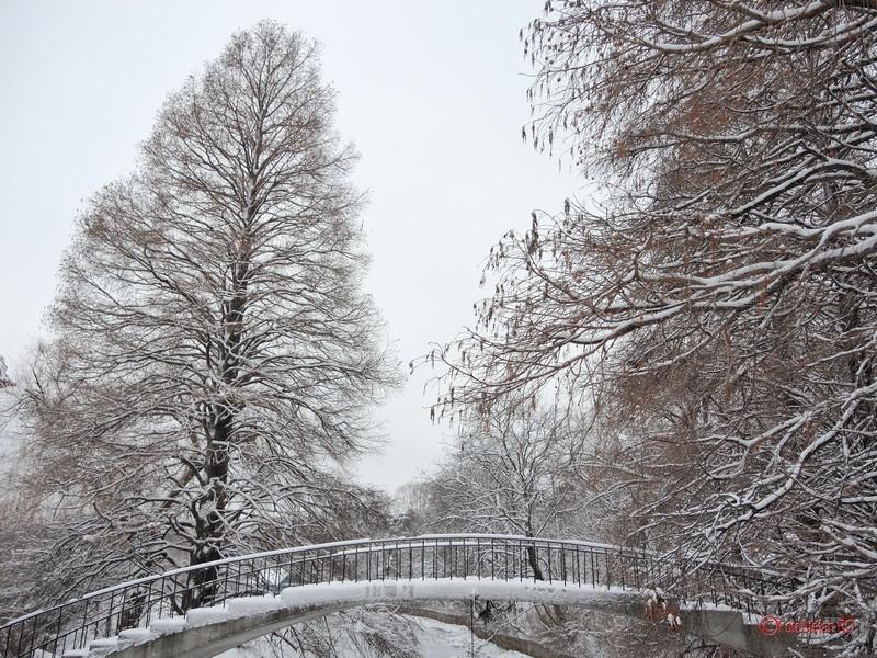 foto zapada iarna bucuresti ianuarie 2017