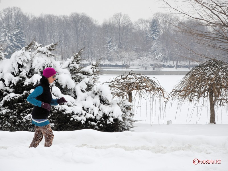 poza alergare iarna parc herastrau