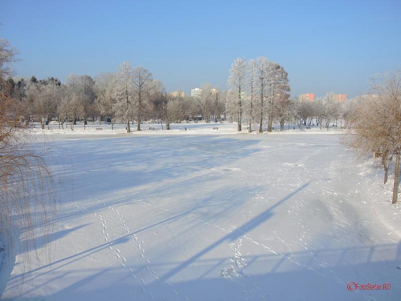 poze parcul titan iarna zapada bucuresti