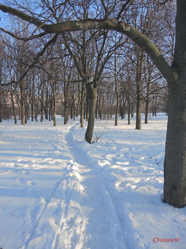 fotografie poteca iarna zapada parcul titan